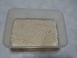 米麹塩麹3日目 DSC_5254.jpg